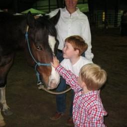 horse photo#10